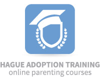 Hague Adoption Training Online